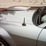 Kurzstab Antenne The Stubby Ford Mustang 4 & 5 1994-2009